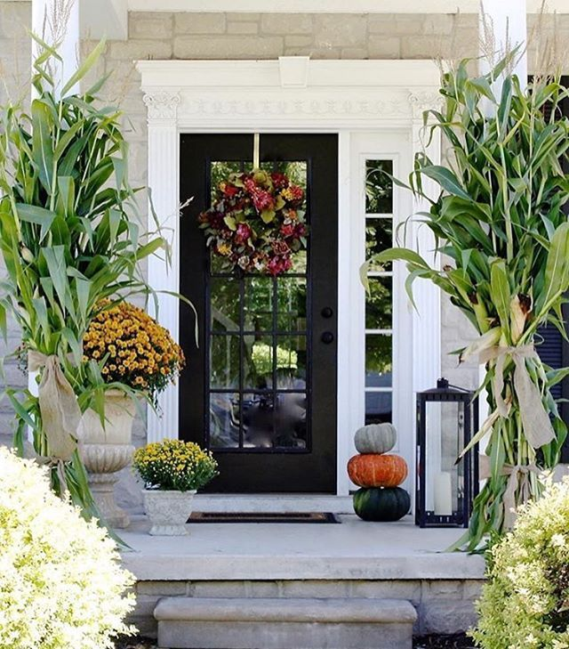 front door with stalks